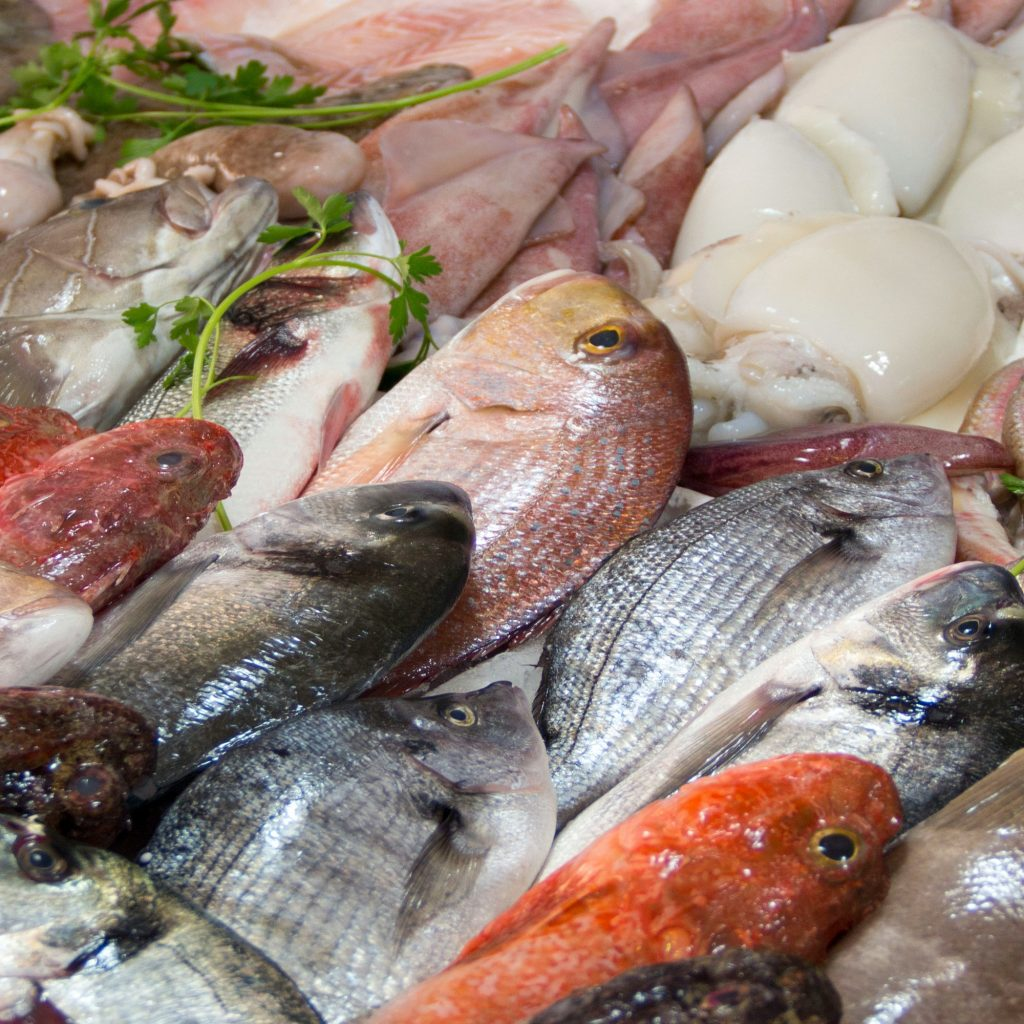 Mixed fish for sale on a market